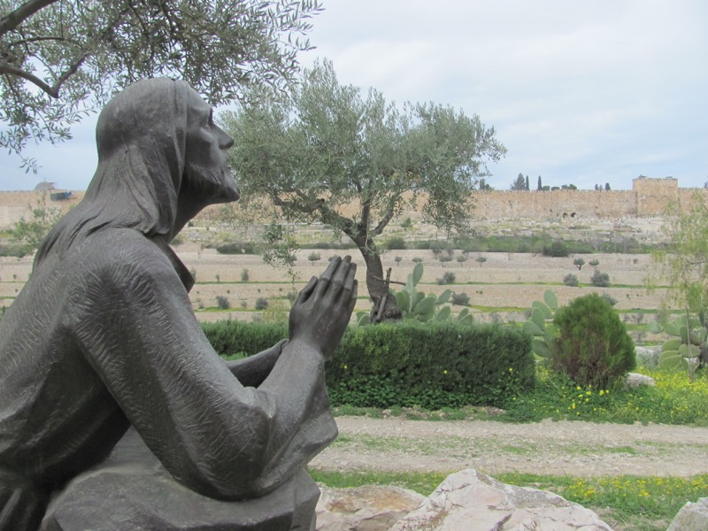 Jerusalem Garden of Gethsemane Mount Israel-Jordan Tour March 2017