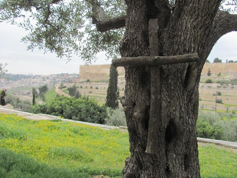 Jerusalem Garden of Gethsemane Mount Israel-Jordan Tour March 2017