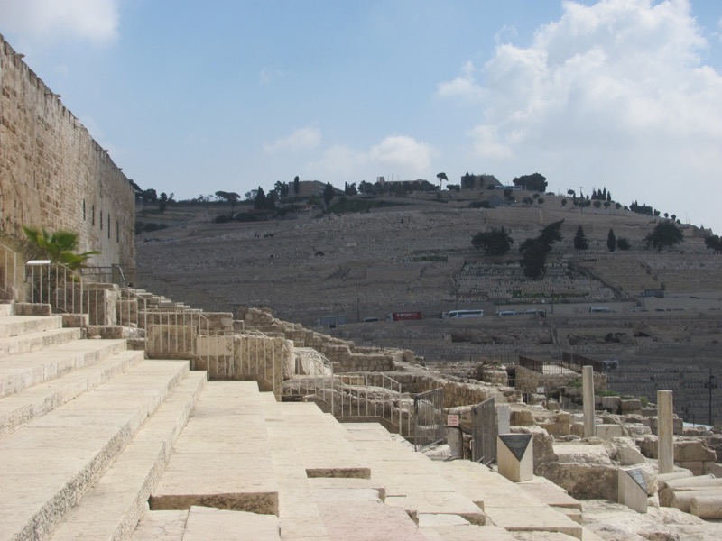 Temple Steps Jerusalem Israel-Jordan Tour March 2017