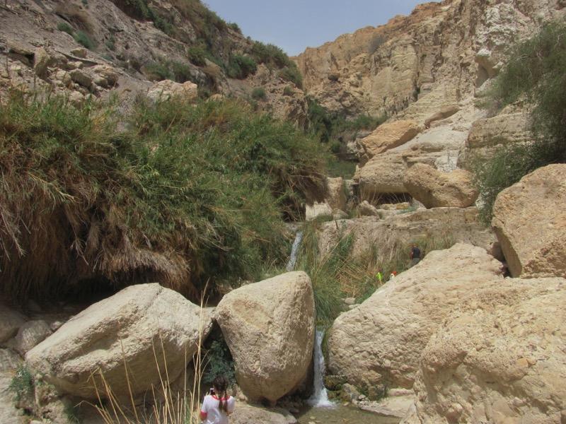 Engedi Water Falls April 2017 Israel Tour