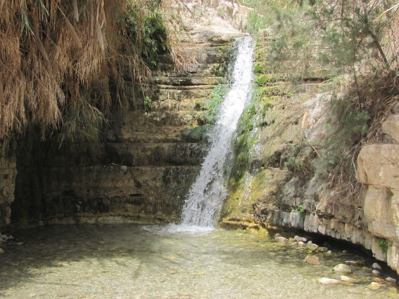 Engedi Water Falls April 2017 Israel Tour