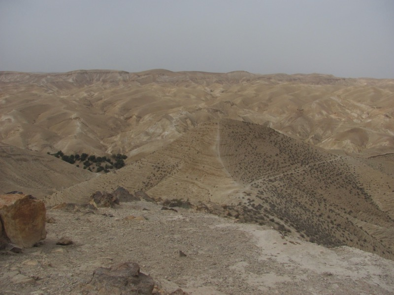 Judean Desert Wadi Qelt April 2017 Israel Tour