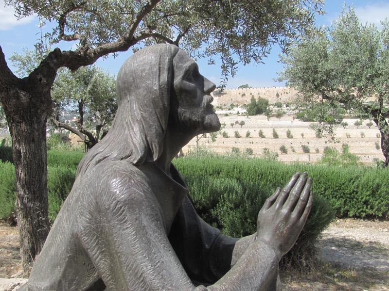 Garden of Gethsemane Jerusalem April 2017 Israel Tour