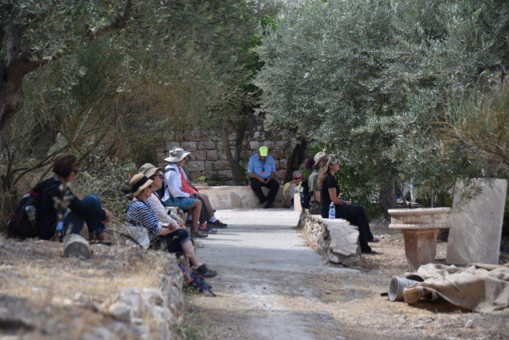 Garden Gethsemane Jerusalem June 2017 Israel Tour