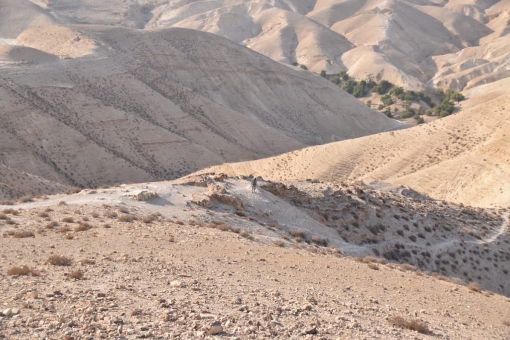 Wadi Qelt Judea Desert September 2017 Israel Tour