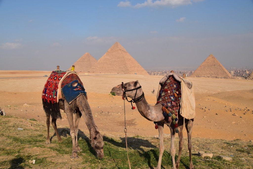 Giza Pyramid Egypt Oct-Nov 2017 Egypt Jordan Israel Tour