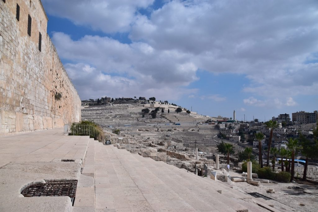 Jerusalem temple steps Oct-Nov 2017 Egypt-Jordan-Israel Tour