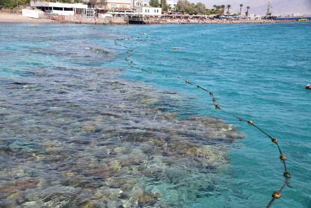 Red Sea - Oct-Nov 2017 Egypt-Jordan-Israel Tour - Dr. DeLancey