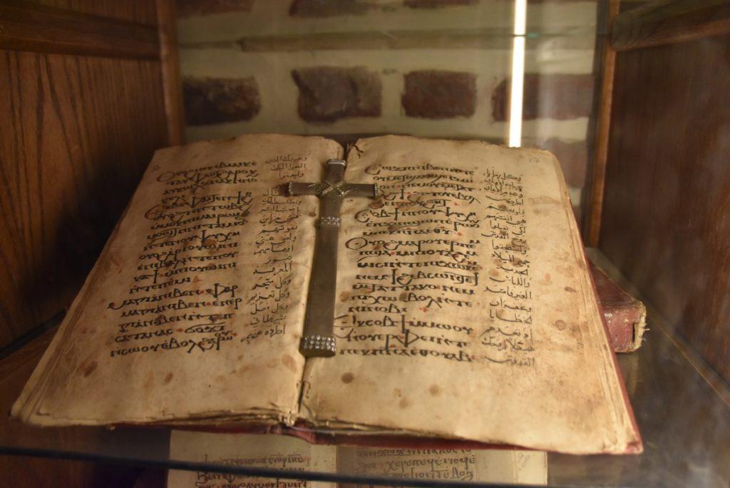 Coptic Bible Oct-Nov 2017 Egypt-Jordan-Israel Tour with Dr. DeLancey