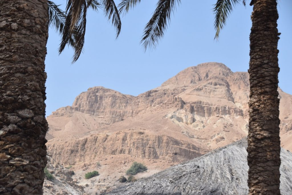 Engedi Egypt-Jordan-Israel Tour Oct-Nov 2017 Dr. DeLancey