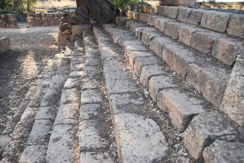 Tel Dan high place Oct-Nov Egypt-Jordan-Israel Tour with Dr. John DeLancey