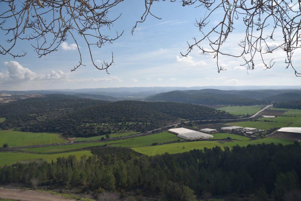 Elah Valley from Azekah