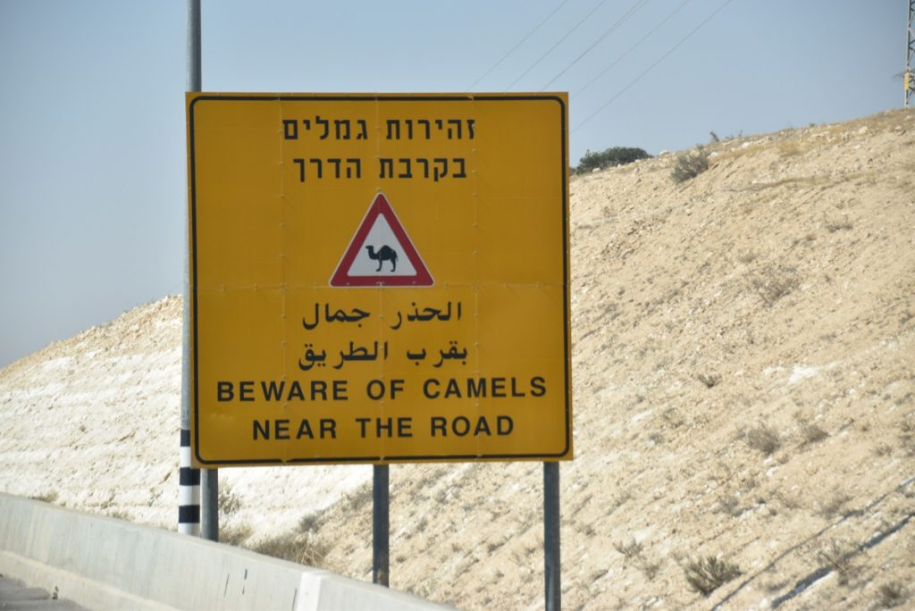 Beware of camel sign January 2018 Israel Tour