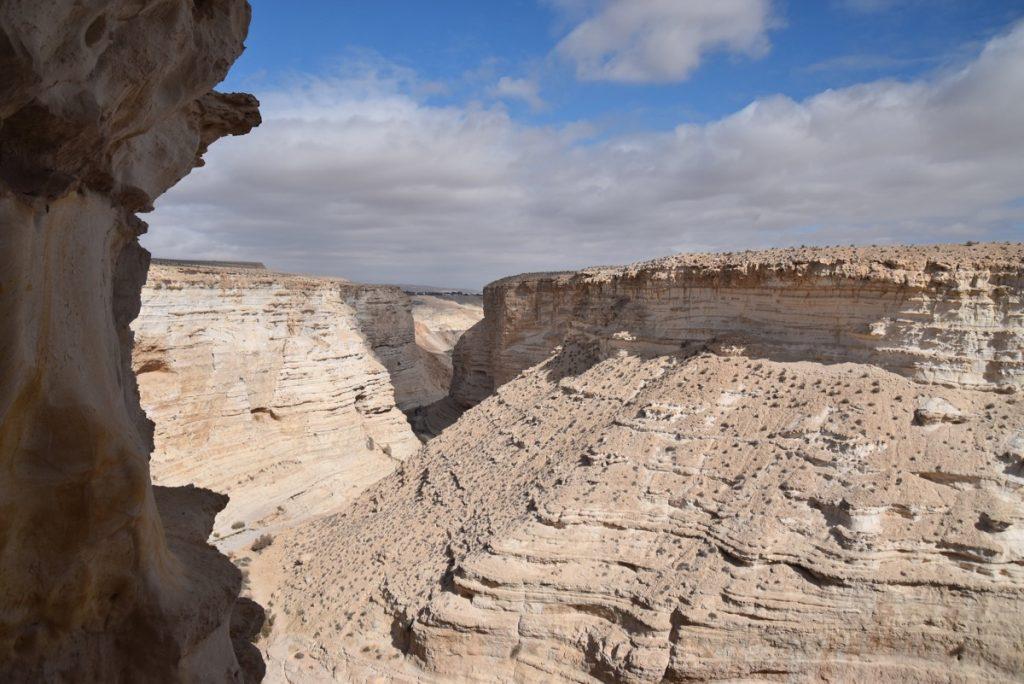 Zin desert January 2018 Israel Tour