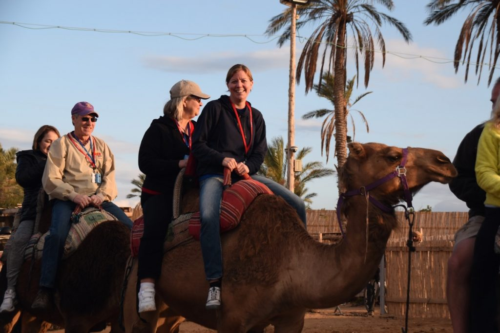 Camel rides Hanokdim January 2018 Israel Tour