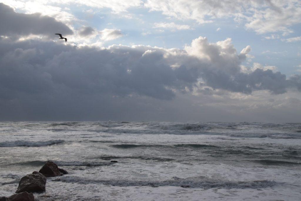 Caesarea Med Sea January 2018 Israel Tour
