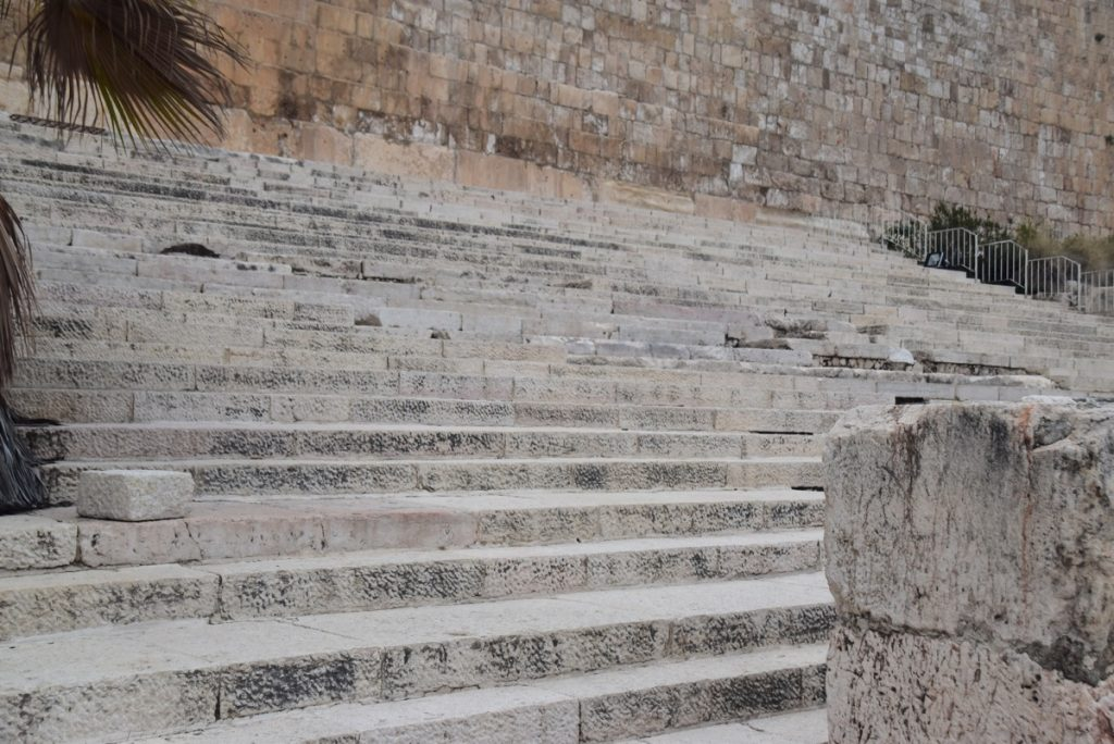 Southwall excavations steps Jerusalem January 2018 Israel Tour