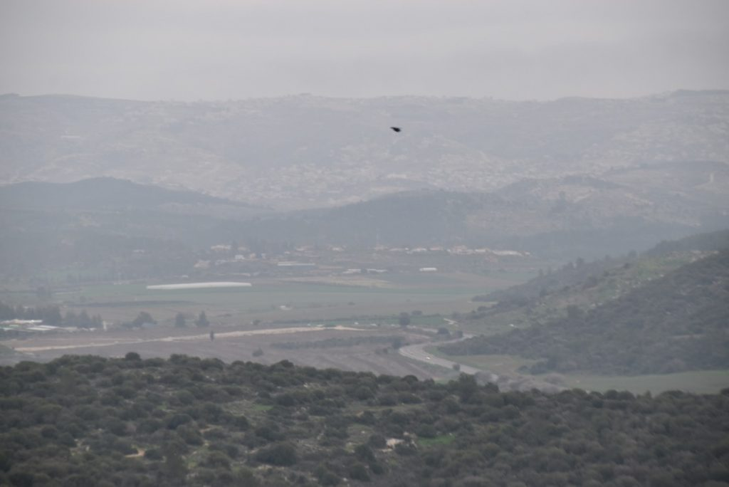 Elah Valley from Azekah February 2018 Israel Tour