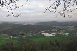 Elah Valley