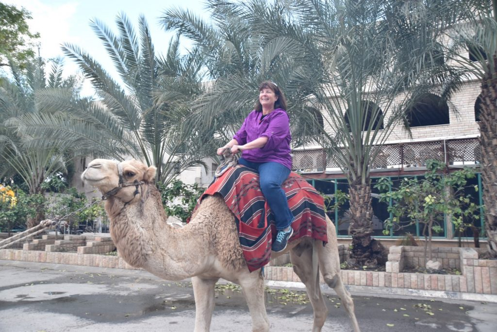 Camel riding February 2018 Israel Tour