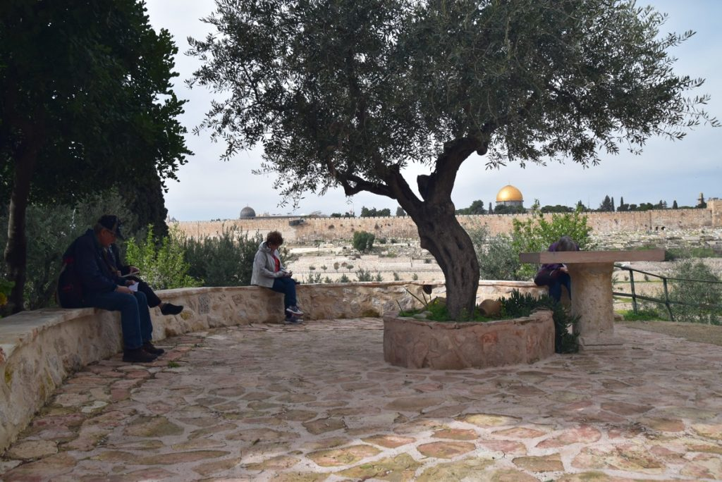 Jerusalem Gethsemane February 2018 Israel Tour with John DeLancey