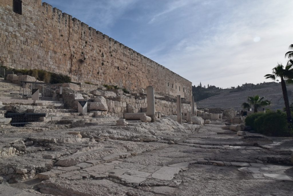 Southern temple steps Jerusalem March 2018 Israel Tour with John DeLancey