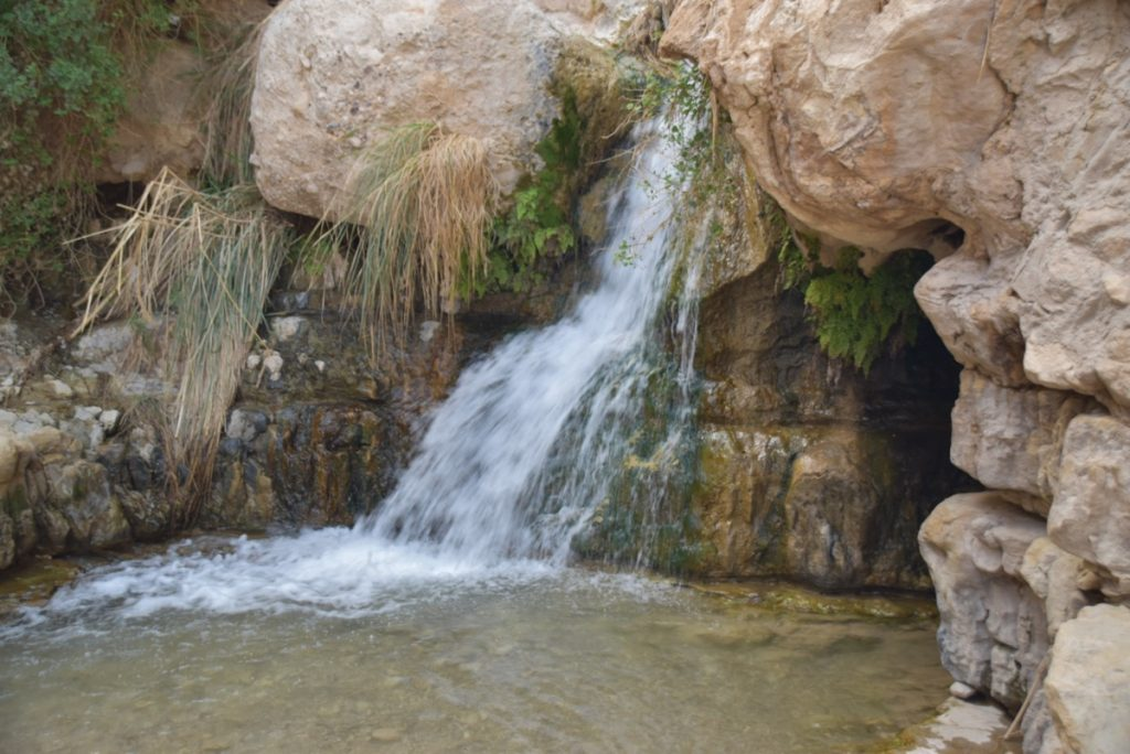 Engedi water falls March 2018 Israel Tour with John DeLancey