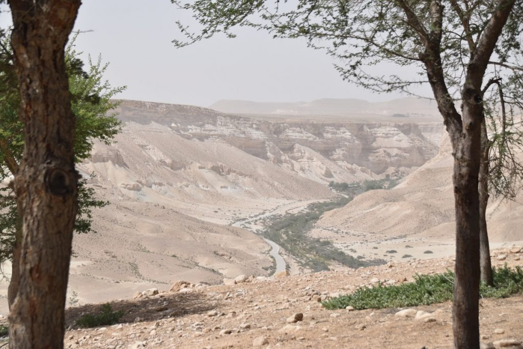 Desert of Zin May 2018 Israel Tour Dr. John DeLancey