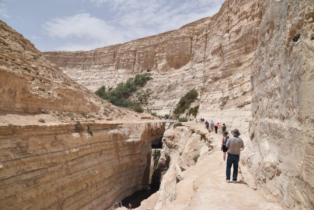 Desert of Zin May 2018 Israel Tour Dr. John DeLancey
