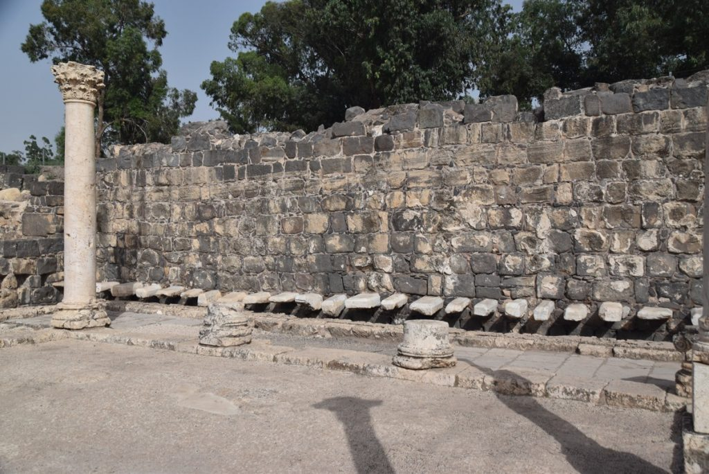 Beth Shean toilets May 2018 Israel Tour Dr. John DeLancey