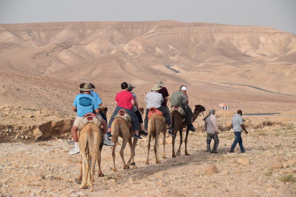 Hanokdim camel rides 2018 Israel Tour Dr. John DeLancey