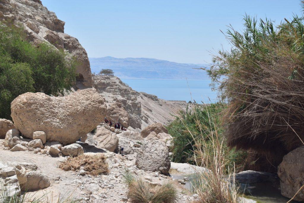 June 2018 Israel tour Holyland Engedi Dr. John DeLancey