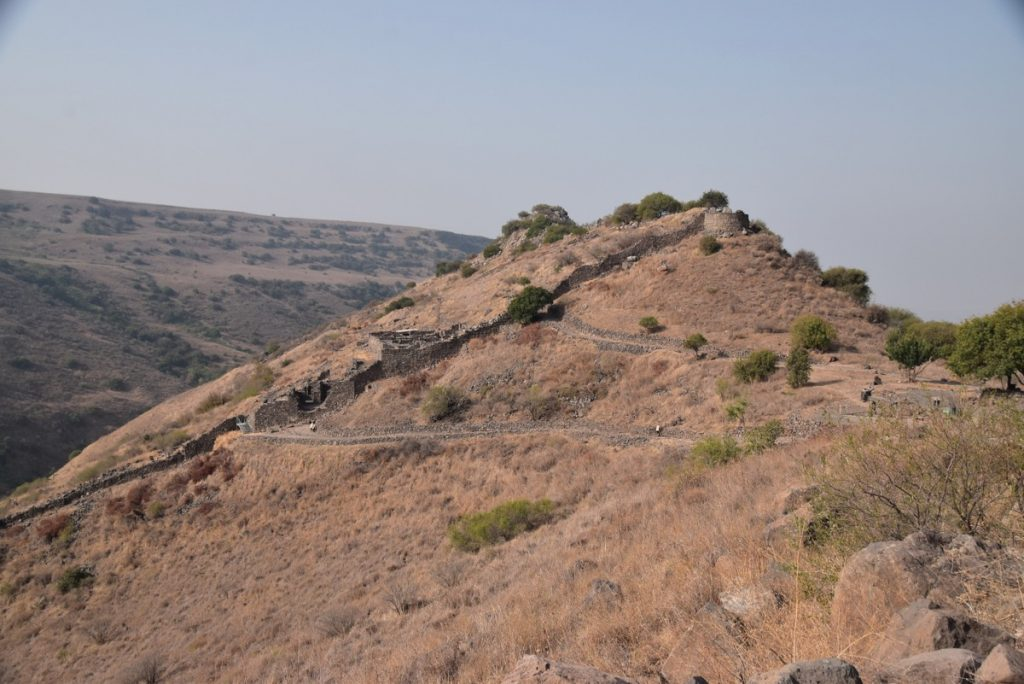 Gamla Golan Heights October 2018 Orchard Hill Israel Tour