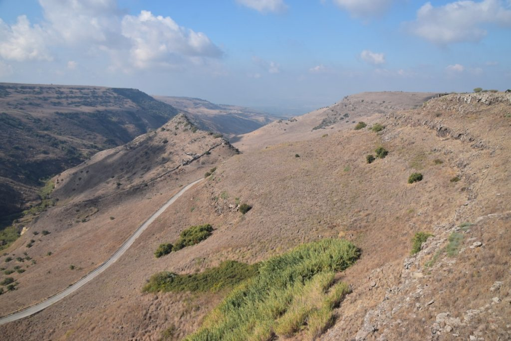 Gamla Nov 2018 Israel Tour with BIMT