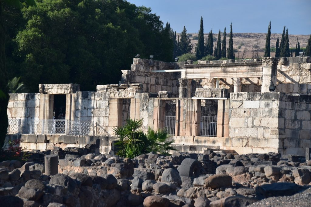 Capernaum synagogueNovember 2018 Israel Tour with John DeLancey