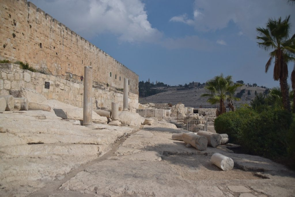 Jerusalem Temple steps Nov 2018 Israel Tour John DeLancey
