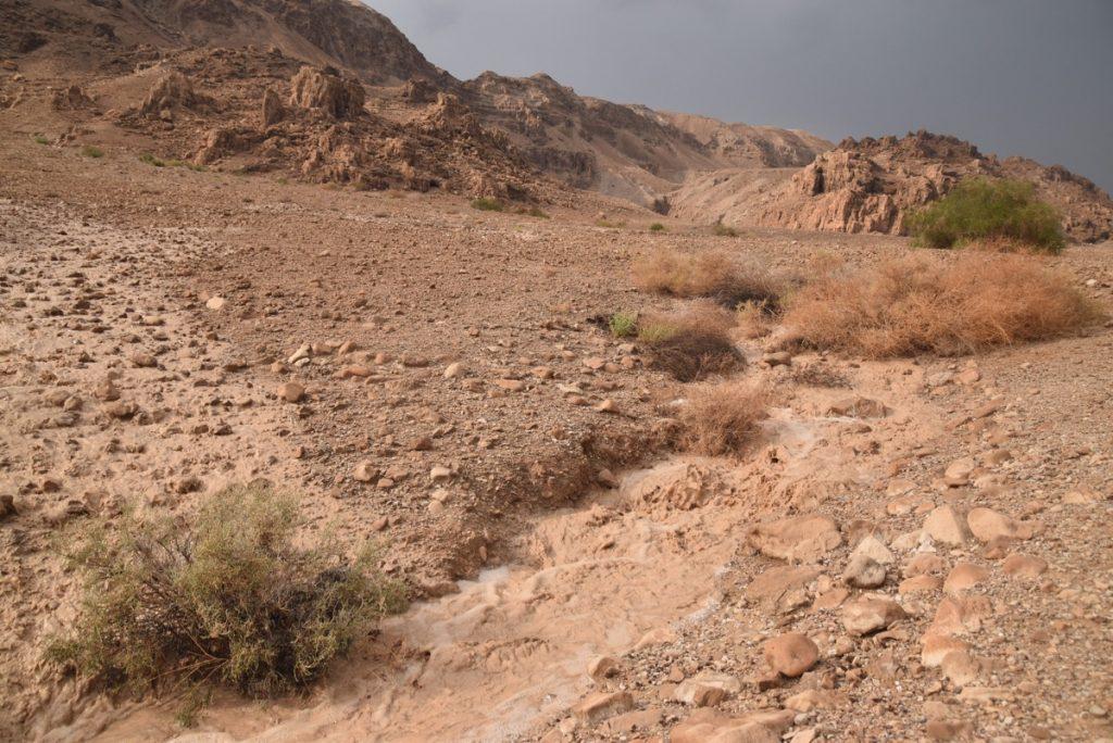 Qumran Israel Tour Nov 2018 John DeLancey