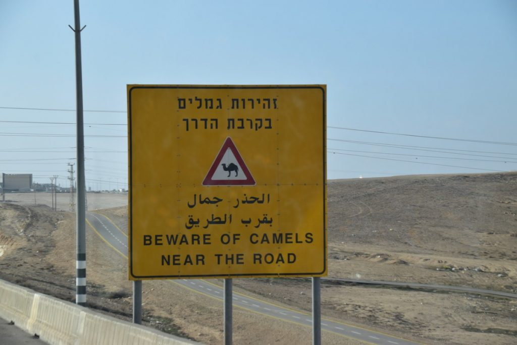 Negev January 2019 Israel Tour with John Delancey
