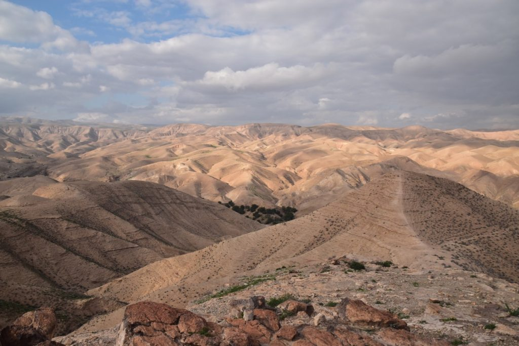 Wadi Qelt January 2019 Israel Tour with John Delancey