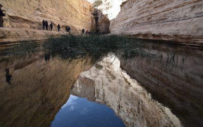 January 2019 Biblical Israel Tour – Day 4 Summary