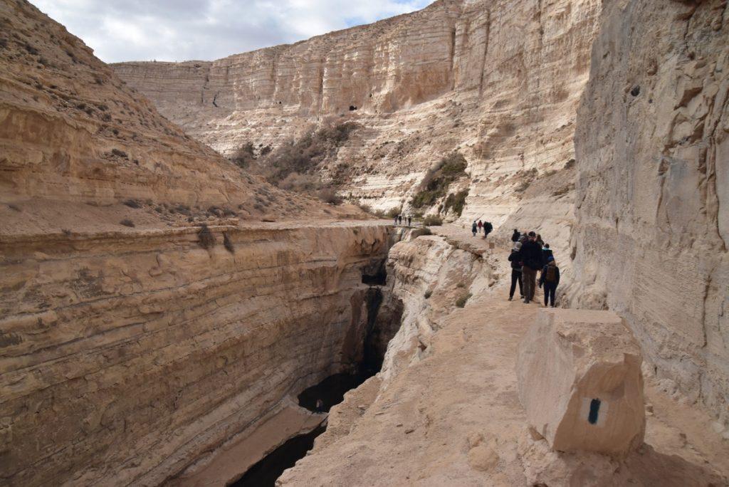 Zin Desert January 2019 Israel Tour with John Delancey