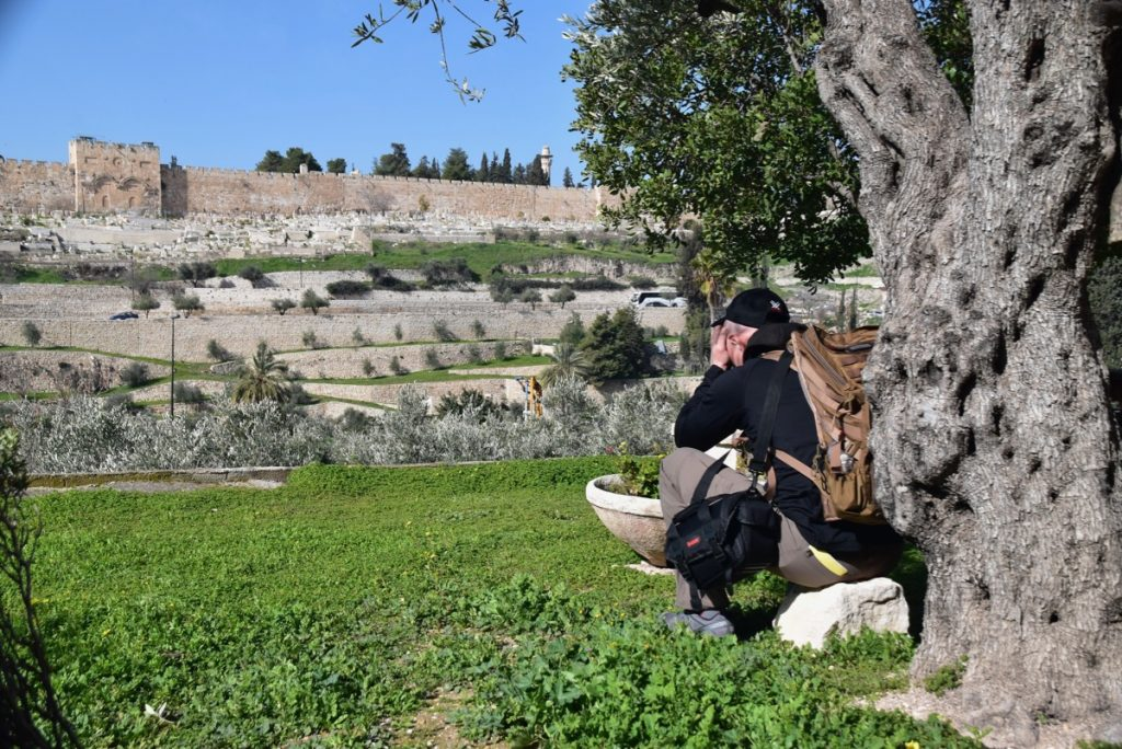 Jerusalem Gethsemane January 2019 Israel Tour with John Delancey of BIMT