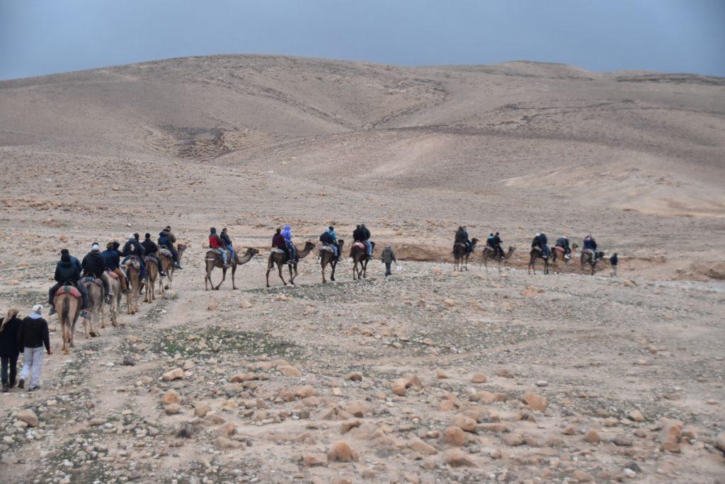 Camel ride Hanokdim January 2019 Israel Tour with John Delancey