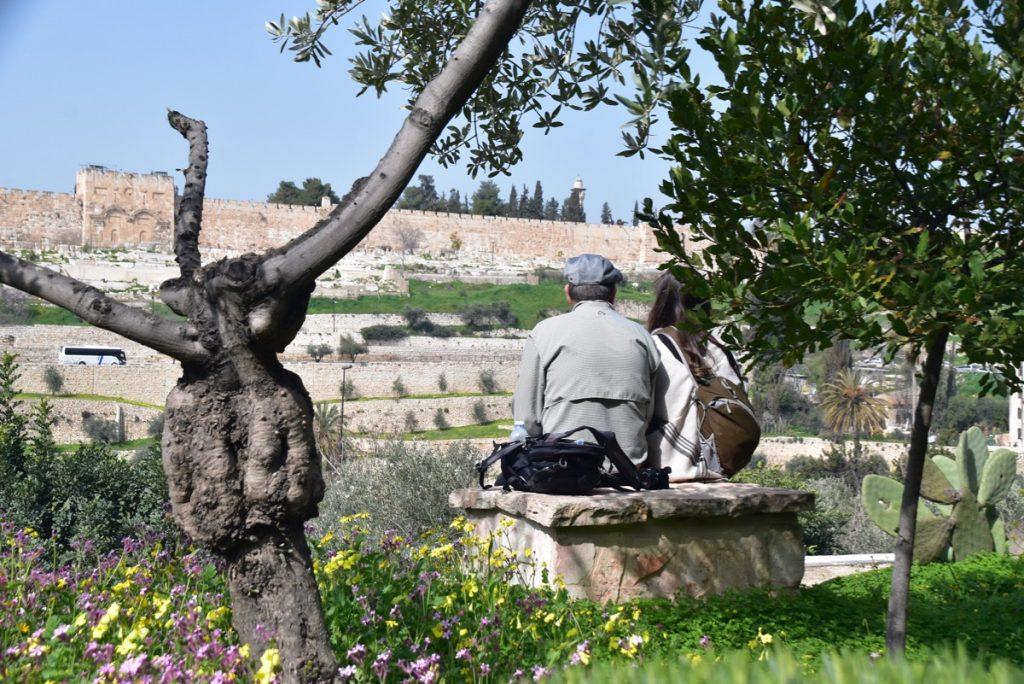 Jerusalem Garden of Gethsemane February 2019 Israel Tour with John DeLancey