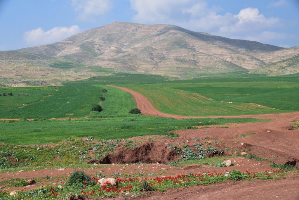 Samaritan Hills February 2019 Israel Tour with John DeLancey