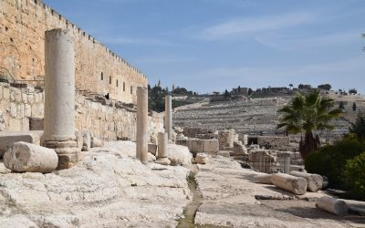 February 2019 Biblical Israel Tour (with Egypt) – Day 9  Summary
