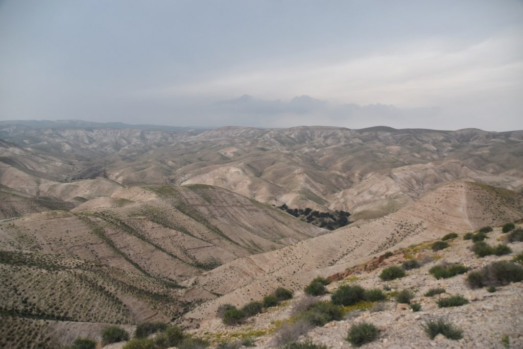 Wadi Qelt March 2019 Israel Tour with John DeLancey