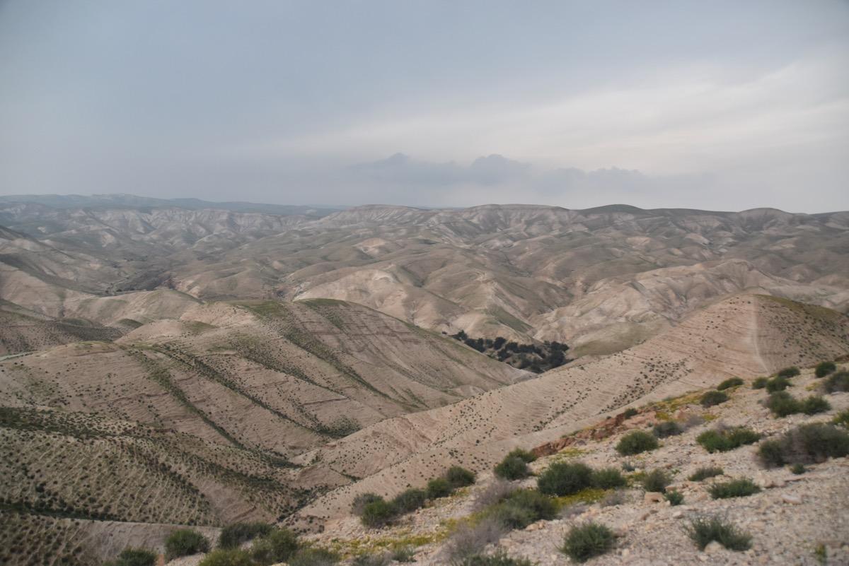 Judean Desert - Wadi Qelt