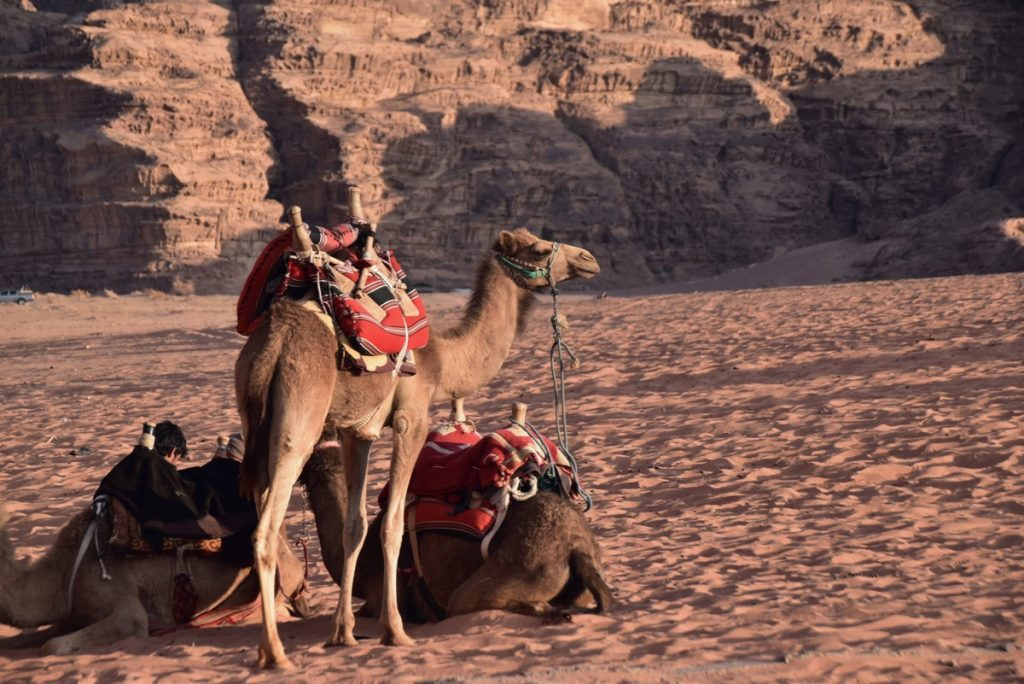 Wadi Rum Jordan March 2019 Israel Tour with John DeLancey
