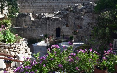 May 2019 Israel Tour Summary – Day 13